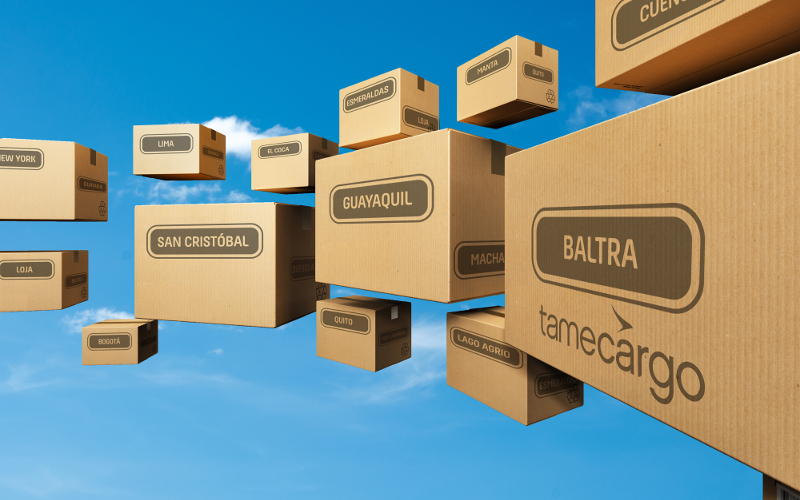 tamecargo other services boxes sky blue